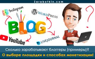 Сколько и как зарабатывают блоггеры Рунета: примеры с цифрами и секреты высоких доходов