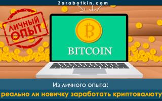 Может ли новичок заработать криптовалюту с нуля – личный опыт